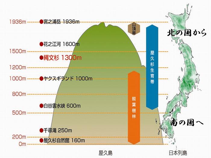 南北2000kmにおよぶ日本列島の自然がつめ込まれている
